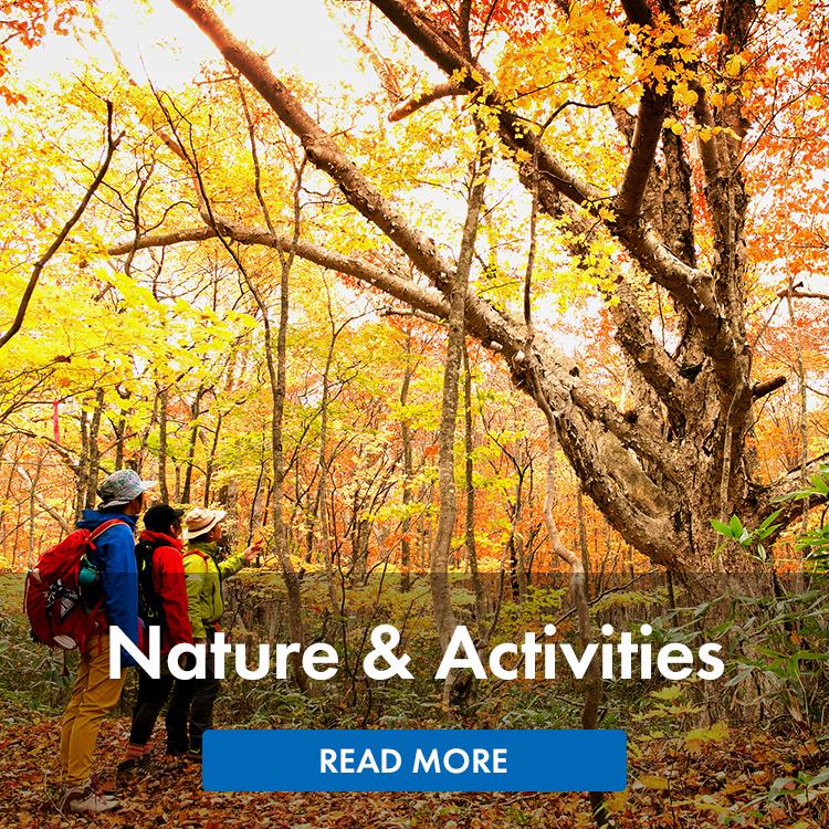 Nature & Activities